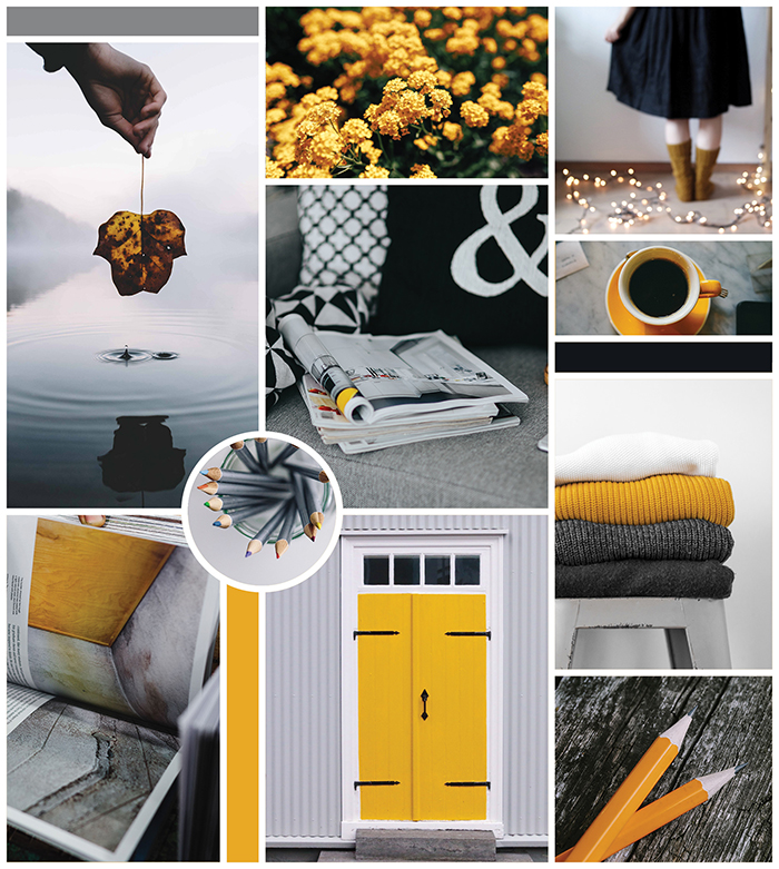 moodboard for the blessed willow gallery branding design